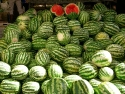 Melons on the market in Bodrum town